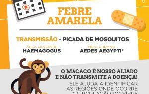 Infográfico: tudo sobre a febre amarela e a campanha de vacinação