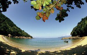 Saiba quais são as melhores praias para crianças em SP
