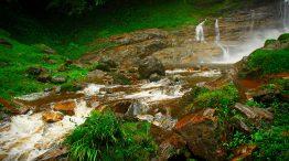Parque Estadual do Rio Turvo