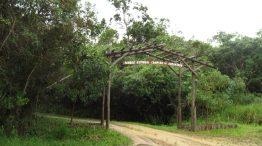 Parque Estadual Campina do Encantado