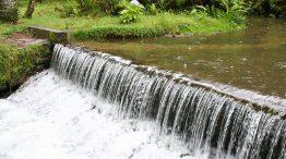 Parque Estadual Mananciais de Campos do Jordão