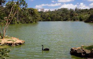 Sabesp participa de ações relacionadas à Semana do Meio Ambiente