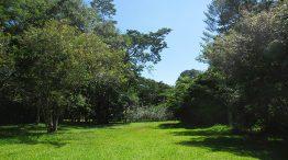 Parque Estadual Porto Ferreira