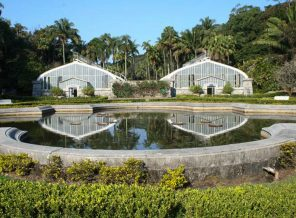 Zoológico, Zoo Safari e Jardim Botânico de São Paulo reabrem