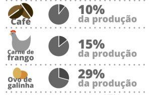 São Paulo responde por 30% do agronegócio nacional