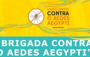Luta contra a dengue e outras arboviroses avança em SP