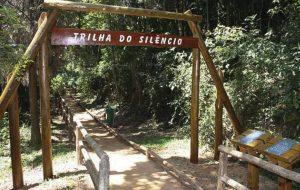 São Paulo conta com trilhas incríveis para curtir a natureza