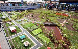 Ribeirão Preto sedia Agrishow, maior feira de tecnologia agrícola do país