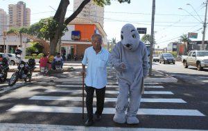 Mortes no trânsito: idosos são principais vítimas de atropelamento