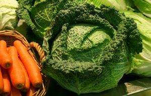 Dia do feirante: Conheça a feira livre de produtos orgânicos de SP