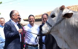 Alckmin destaca vanguarda da ciência nacional durante 10ª ExpoGenética