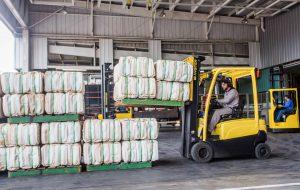 Dia do Campo Limpo: SP elimina últimos lotes do agrotóxico BHC