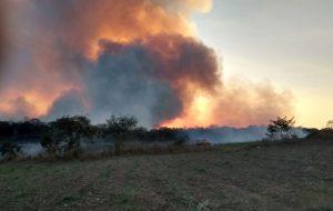 SMA alerta população para prevenir incêndio em unidades de conservação