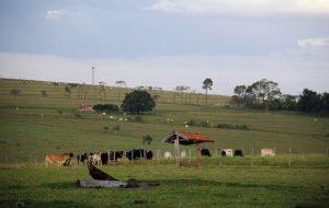 Audiências públicas debatem titulação de assentamentos rurais