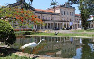 USP em Piracicaba é o centro do agronegócio a partir desta quarta-feira (9)