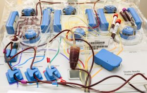 Acidente em Taguaí: vítimas necessitam de doação de sangue com urgência