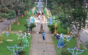 Instituto promove o '1º Natal Iluminado do Butantan'