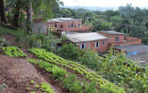 """""""Dia de Campo no Asfalto"""" mobiliza moradores de comunidade em SP"""