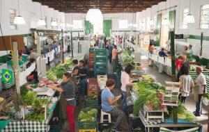 Parque da Água Branca sedia feira de produtos orgânicos há 27 anos
