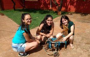Alunos da Etec de Pirassununga promovem ações de voluntariado