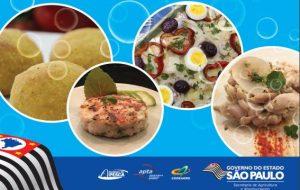 Secretaria da Agricultura lança livros sobre uso do pescado
