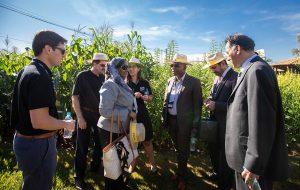 Governo de SP recebe comitiva internacional para debater agricultura