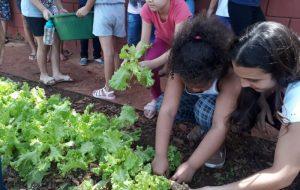 Projeto na cidade de Tupã estimula alimentação saudável entre crianças