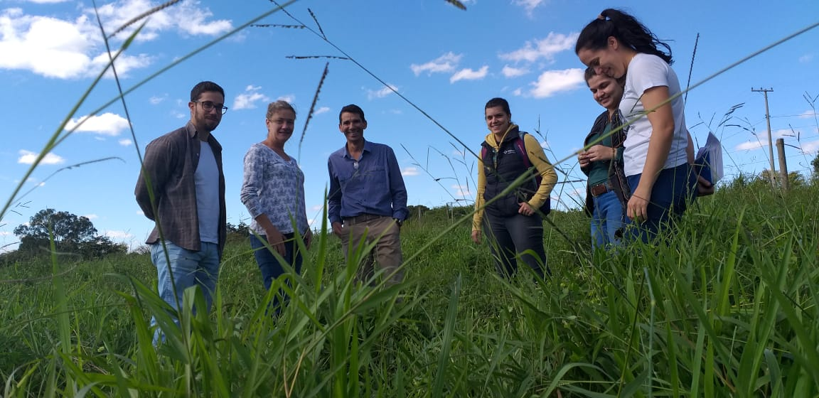 Resultado de imagem para Agricultura cria sistemas de produção com menor impacto ambiental