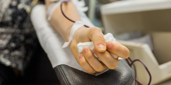 Pró-Sangue lança assistente virtual para tirar dúvidas sobre doação