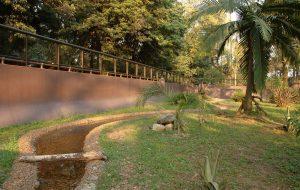 Butantan recebe autorização para funcionar como jardim zoológico