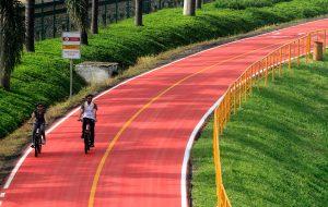 Trecho da Ciclofaixa Rio Pinheiros é reaberto ao público