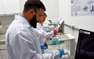 Unicamp: Estudo investiga relação entre composto derivado do diesel e obesidade