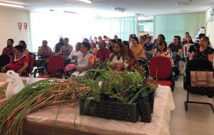 Casa da Agricultura de Araraquara incentiva cadeia produtiva de plantas medicinais