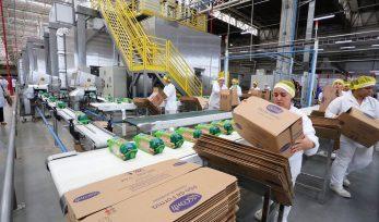 Inauguração da linha de produção da fábrica da Bauducco