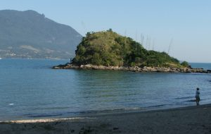 Em janeiro, conheça a vida marinha na praia de São Sebastião