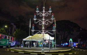 Natal Iluminado do Butantan bate recorde de público e vence Concurso Cidade Iluminada