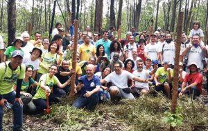 Área de Proteção Ambiental do Carmo promove ação de plantio coletivo
