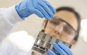 Cientistas de SP estão desenvolvendo vacina contra novo coronavírus