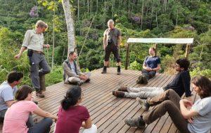 Pesquisas em SP avaliam como áreas regeneradas protegem biodiversidade