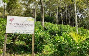 Seminário no Vale do Ribeira propõe discussão sobre desenvolvimento sustentável