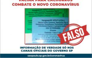 É falso que vacina para cachorro combate novo coronavírus