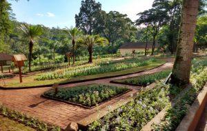 Unidade de Conservação em Rio Claro apresenta revitalização de jardim