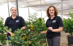 Competência feminina impacta agronegócio e desenvolvimento científico em SP