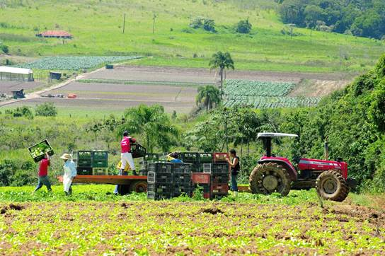 Governo lança AgroSP+Seguro e anuncia R$ 215 milhões para crédito e seguro  rural | Governo do Estado de São Paulo