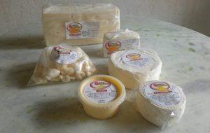 Secretaria de Agricultura apoia a produção de queijo dos laticínios de Cunha