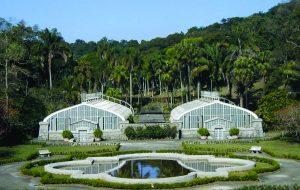 Fundação Zoológico lança livro sobre Parque Fontes do Ipiranga