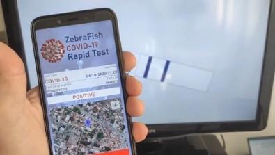 Aplicativo permite usar peixe paulistinha para diagnosticar COVID ...
