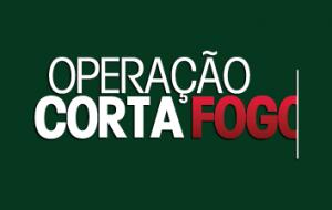 Operação Corta Fogo previne e combate ocorrências de incêndio florestal em SP