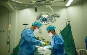 Em uma semana, HC de Botucatu realiza seis transplantes de órgãos
