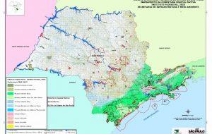 Novo Inventário Florestal aponta crescimento de 214 mil hectares de vegetação nativa